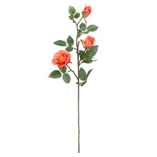 Diamond Rose Stem By Ashland, Coral