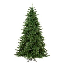 6.5' Pre-Lit Northern Pine Full Artificial Christmas Tree - Warm Clear LED Lights