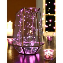 Apothecary & Company Decorative String Lights, Pink Displayed