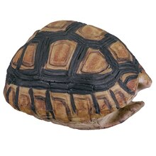 Mini Tabletop Faux Turtle Shell By Ashland