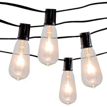 Edison ST12 Bulb Light Set By Ashland