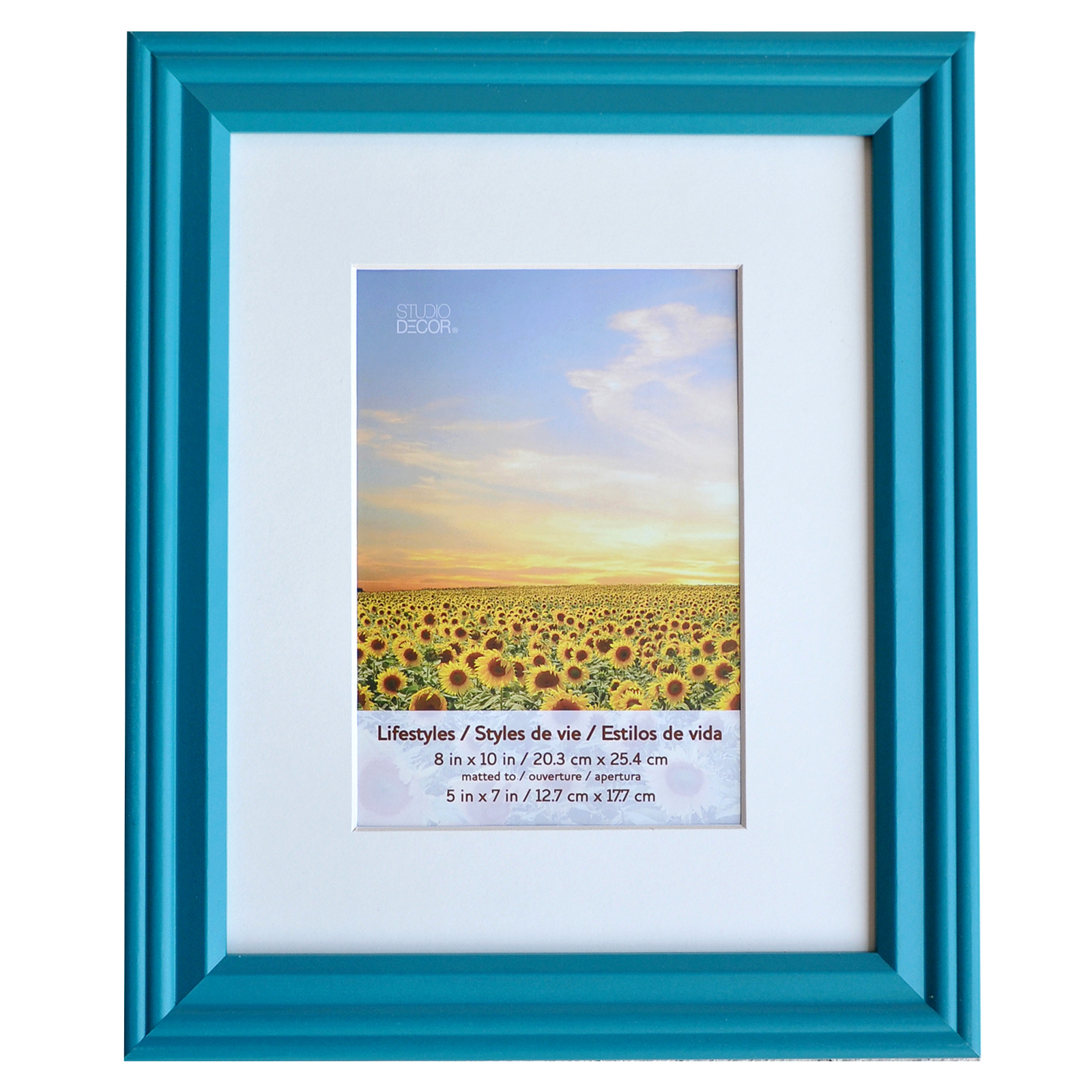 teal lifestyles wall frame by studio dcor