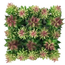 Small Succulent Mat By Ashland 1
