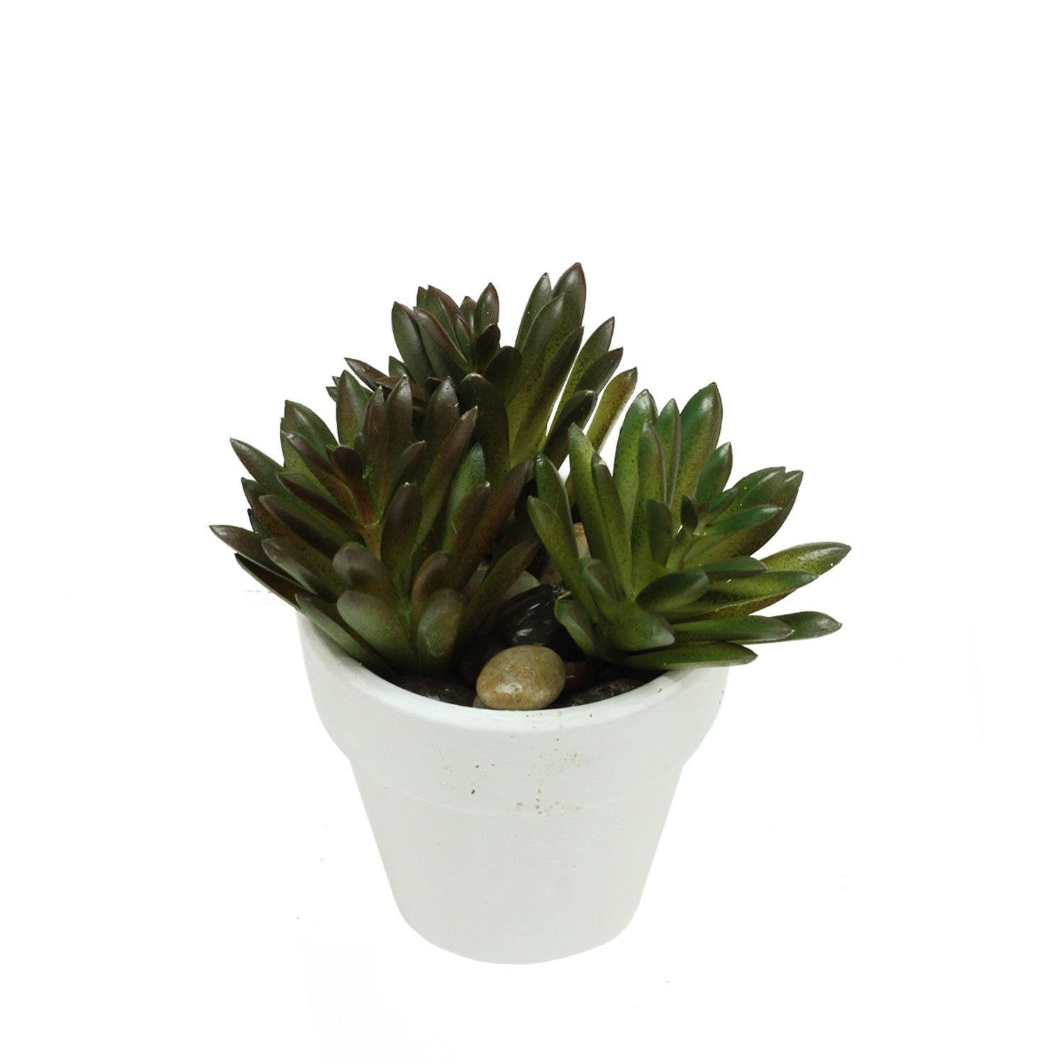 artificial potted green and red spring succulent with stones