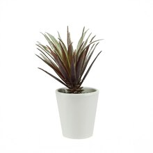 Artificial Red and Green Aloe Succulent Plant with Round White Pot