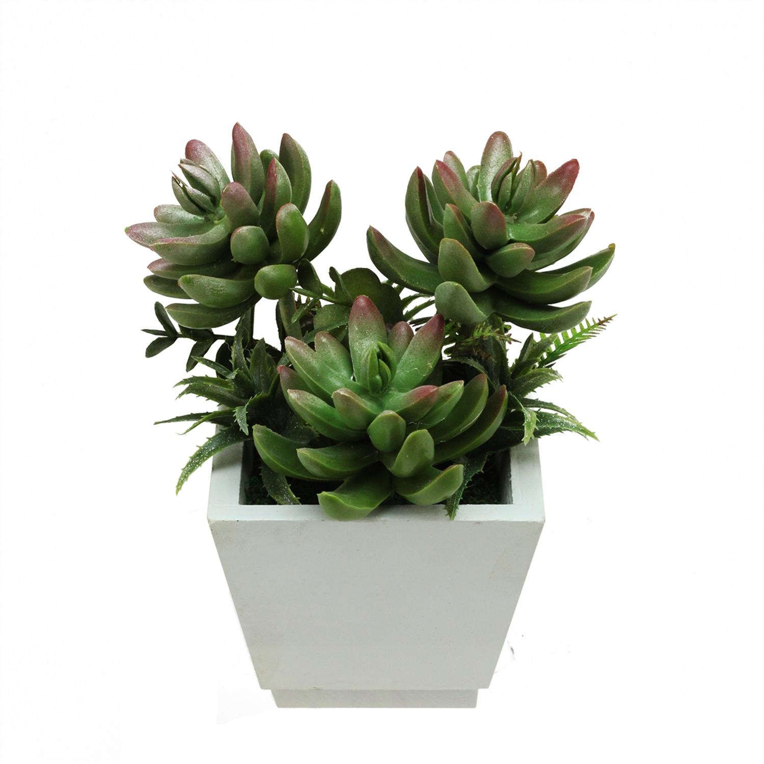 artificial mixed green u0026 red succulent plants and ferns with wooden square pot