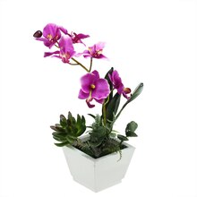 "12"" Artificial Pink Orchid with Red & Green Succulents in Decorative Square White Pot"