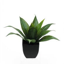 "16"" Artificial Green Agave Succulent in Black Pot"