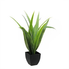 "21.5"" Artificial Green Agave Succulent in Black Pot"