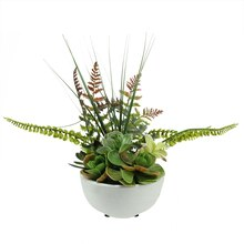 "11.5"" Artificial Mixed Red & Green Succulents and Ferns in White Crackle Finish Bowl Pot"