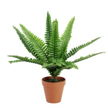 "19"" Potted Artificial Green Boston Fern Plant"