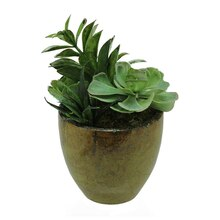 Artificial Mixed Green and Red Succulent Plants with Pot