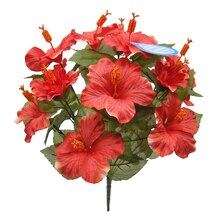 Coral Water-Resistant Hibiscus Bush By Ashland