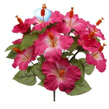 Fuchsia Water-Resistant Hibiscus Bush By Ashland