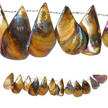 Bead Gallery Large Teardrop Shell Beads, Amber Side