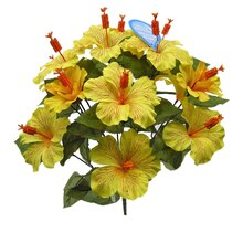 Yellow Water-Resistant Hibiscus Bush By Ashland