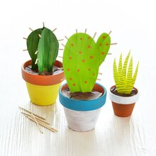 Kids Club® Cactus Garden, medium