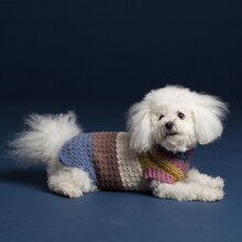 Caron® Cakes™ Textured Crochet Dog Coat in Turkish Delight, medium