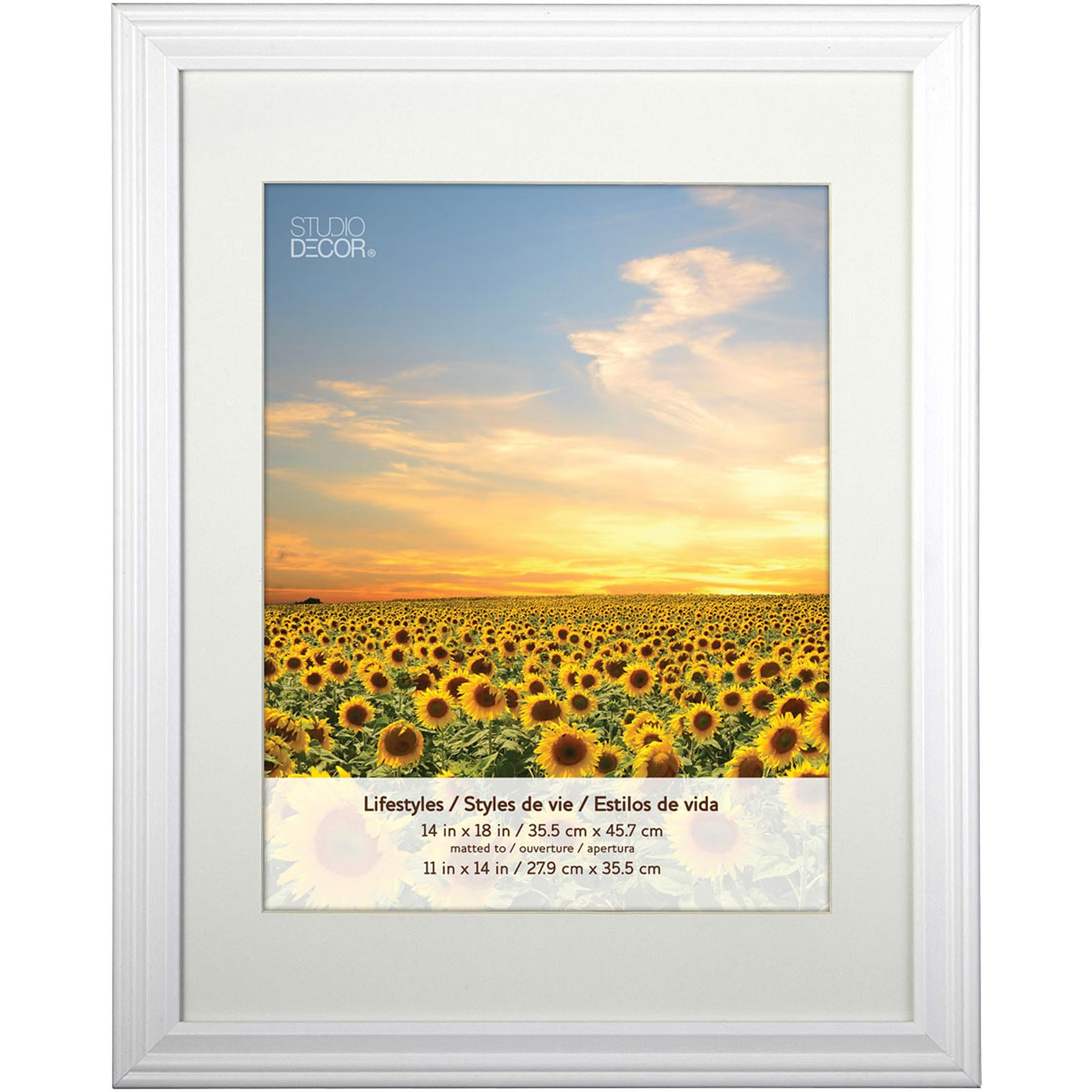 white frame with mat lifestyles by studio dcor